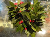Laurel crown with red ribbon and red Hypericum